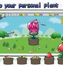 Raise and Nurture Cute Plants with Sweet Garden